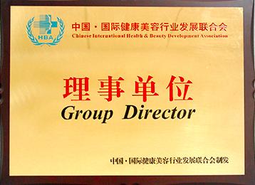 中国国际健康美容行业发展联合会理事单位